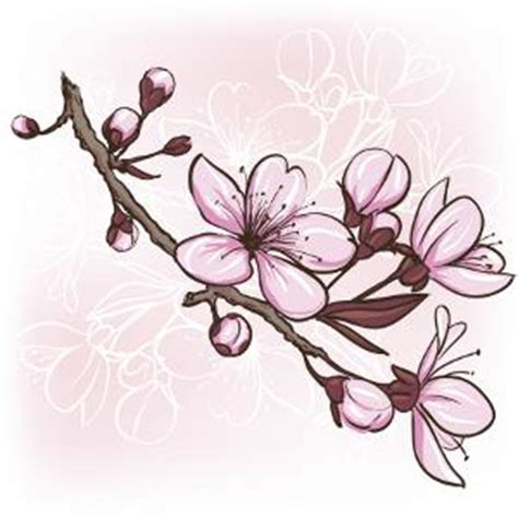 Flower Tattoo Design Pictures Cherry Blossoms Designs