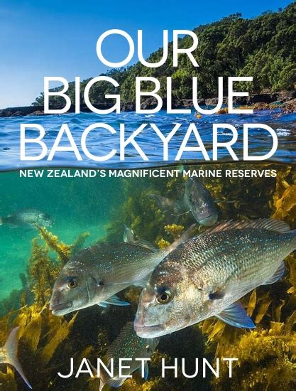 our big backyard product our big blue backyard book school essentials
