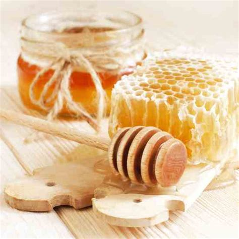 beeswax alchemy make your own special beeswax soaps candles balms creams and salves books the ancient history of beeswax health and wellness
