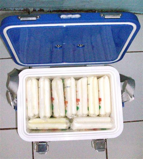 Dtozym 1 Box Isi Berapa peluang bisnis es lilin yoghurt aneka rasa kaya khasiat