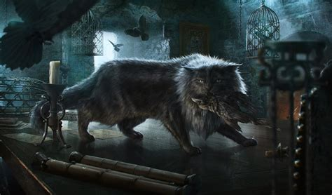 balerion cat  wiki  ice  fire