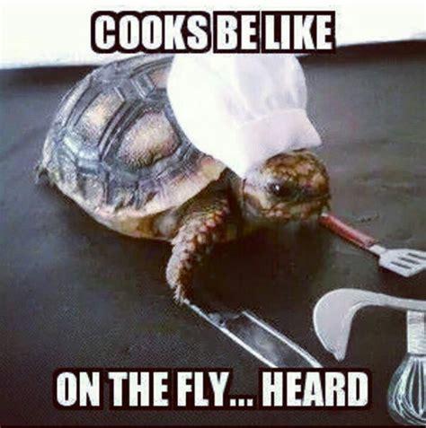Line Cook Memes - best 25 server humor ideas on pinterest waitress humor