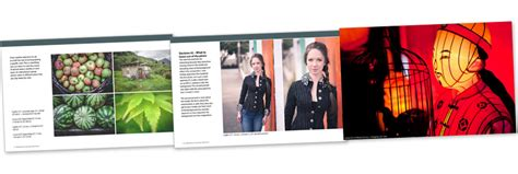 poolology mastering the of aiming books mastering composition book two the creative photographer