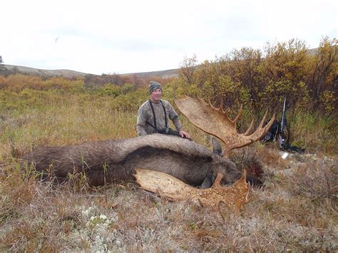 Brown Interior Design Alaska Hunting And Fishing Guides Pike Safaris 187 Alaska