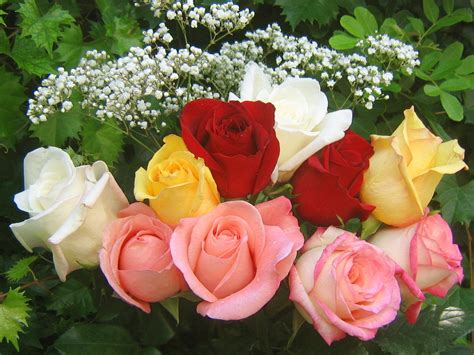 How To Make A Bouquet Of Roses With Paper - roses bouquets wallpapers