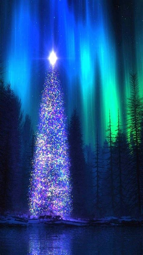 nothern lights christmas tree iphone wallpaper iphone