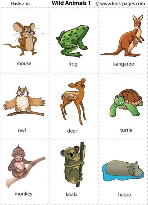 printable flash cards of animals wild animals printable for poster or game cards animals