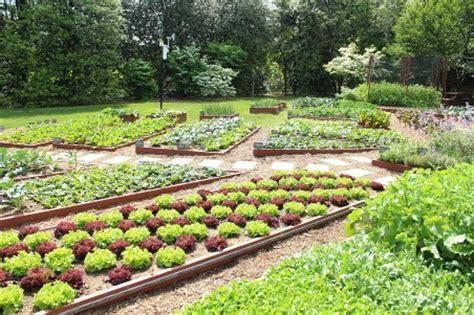 White House Vegetable Garden Aviva Takes A Peek At The White House Vegetable Garden