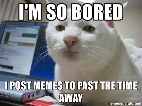 Bored Memes - i m so bored i post memes to past the time away serious