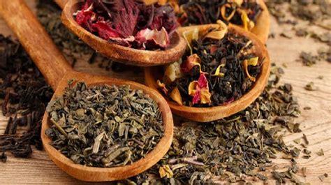 macam macam obat herbal  khasiatnya dokter sehat