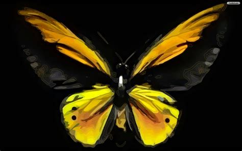 black wallpaper with yellow butterflies beautiful hd butterfly wallpaper with a yellow butterfly