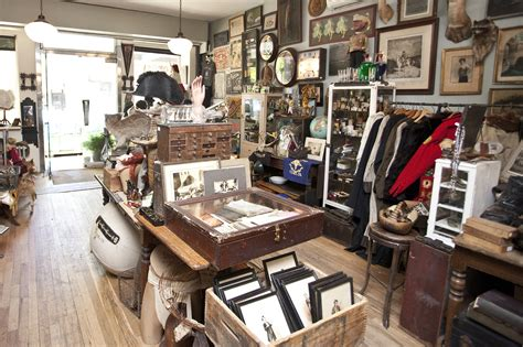 Cabinet De Curiosité Obscura by Antique Stores In Nyc For Vintage Finds And Retro Clothes