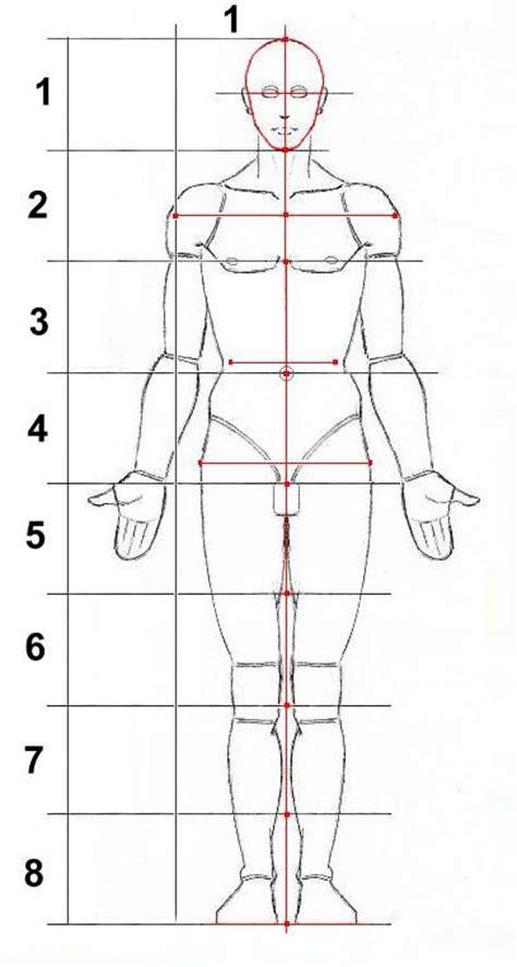 corpo umano maschile organi interni disegno corpo umano organi interni oq75 187 regardsdefemmes