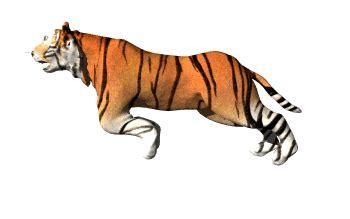 Kartun Animasi Chester Cheetah cool