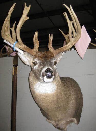 classic bucks big bucks at the missouri deer classic agweb