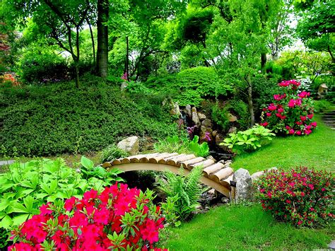 Pretty Flower Garden Nature Flowers Wallpapers For Desktop Wallpaper