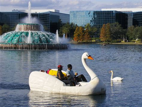lake eola swan boats stay at home wendy the other orlando