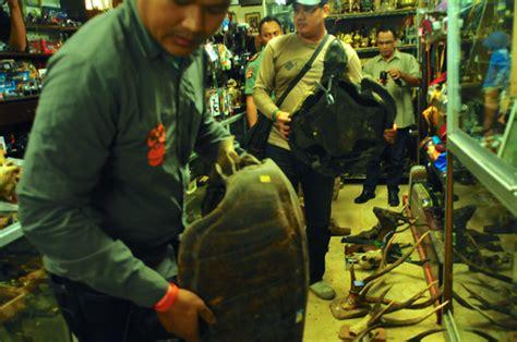 Jual Barang Antik Di Bandung gerebek toko barang antik di bandung temukan puluhan souvenir satwa dilindungi mongabay co id