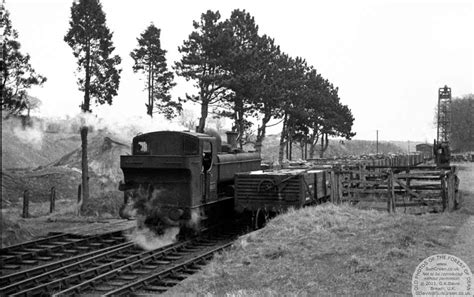 Glos Shed Web by Coleford Goods 1964