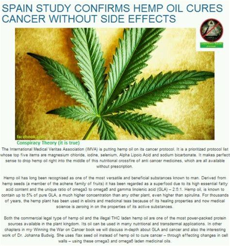 best hemp for cancer best 25 cannabis cures cancer ideas on