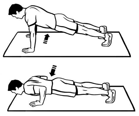 push up diagram push up diagram 28 images push up glutes routine and