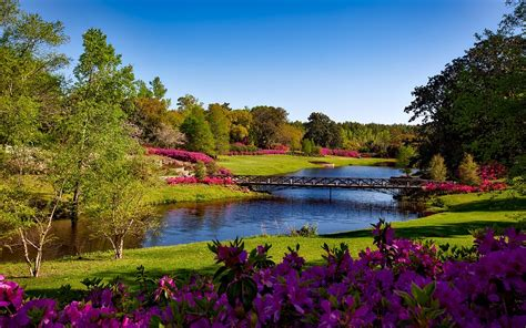 free photo bellingrath gardens alabama free image on
