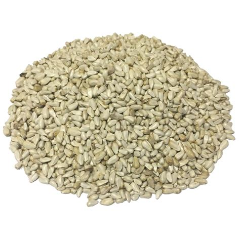 wagner s 50 lb safflower wild bird food 84079 the home
