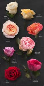 meaning of color of roses best 25 color meanings ideas on purple