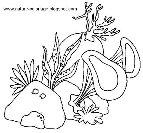 Coloriage De La Nature Impimer Colorier Le Dessin Algues Photo A Colorier Ben 10