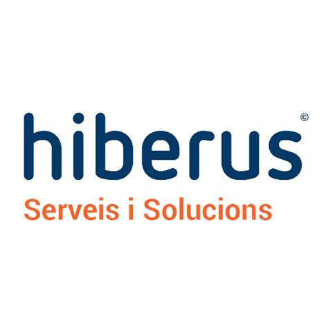 history hiberus tecnologia experts  business