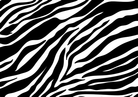 zebra print background vector free vector stock graphics images