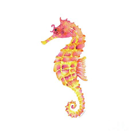 seahorse colors pink yellow seahorse square painting by kirkpatrick