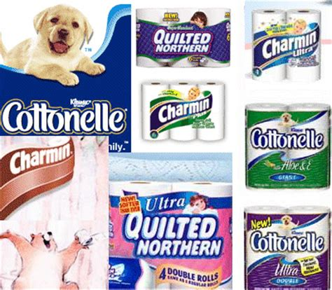 Companies That Make Toilet Paper - soft fluffy recycled tissue is possible says biotech