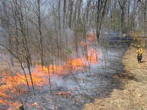 Controlled Burn prescribed burns michigan nature association