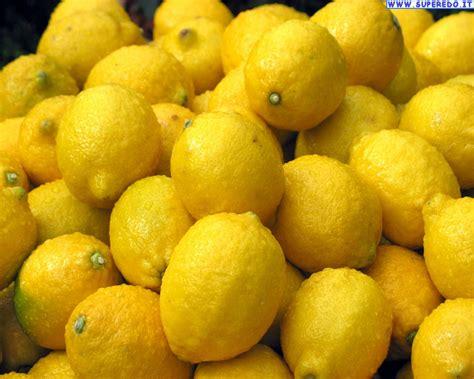 testo lemon tree su instragram francesco monte e cecilia rodriguez flirtano
