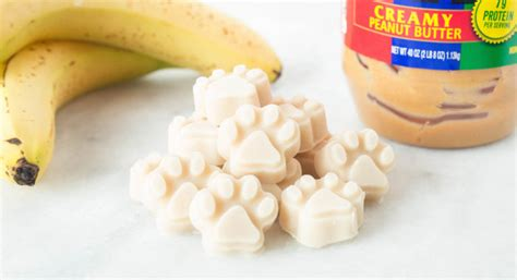 yogurt treats yogurt peanut butter banana treats recipe easy treats
