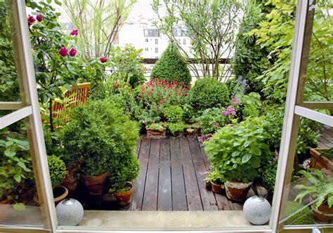 piante per terrazzo piante perenni soluzione di casa con foto terrazzo con