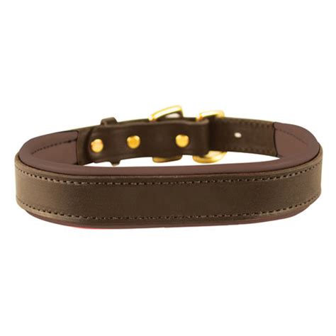 leather collar with nameplate padded leather nameplate collar dover saddlery