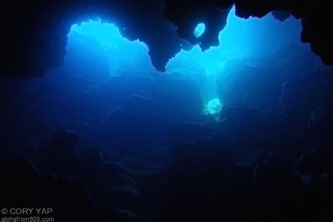 The Blue Room Kauai by Cave Diving At Pupukea July 10 2011 Aloha From 808