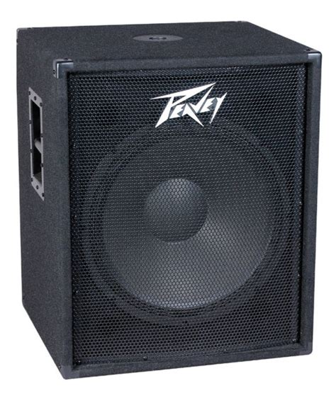 Paket Sound System Martin Roland 10inch peavey pv118 passive unpowered subwoofer 1x18 quot new