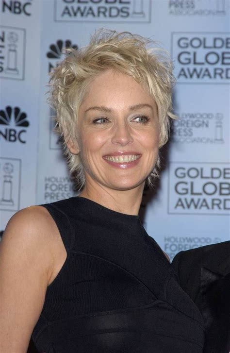 pictures for sharon stone hair shenion best 25 sharon stone hairstyles ideas on pinterest