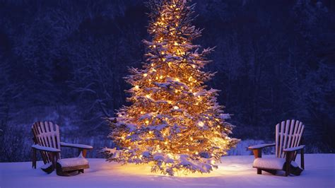 christmas tree snow winter hd wallpaper of christmas