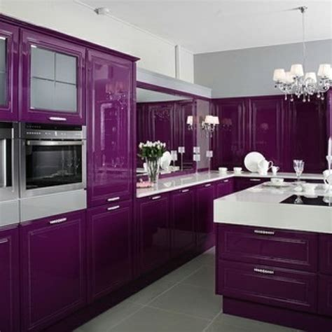 purple kitchen ideas best 25 purple kitchen cabinets ideas on pinterest