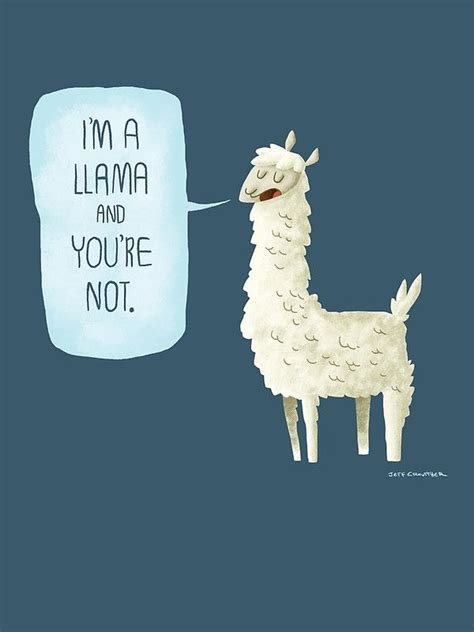 lua the llama and the mountain of books 1000 images about wallpaper on