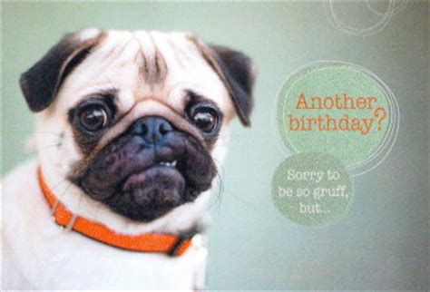 pug birthday cards the inky paw pug gifts pug cards pug greeting cards pug pug stationery pug greeting