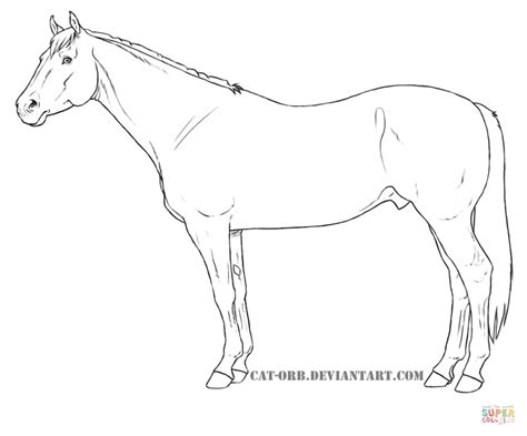 Coloring Pages Of Quarter Horses | quarter horse coloring page free printable coloring pages