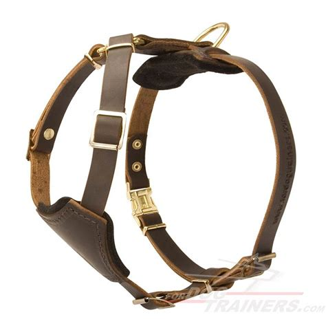 puppy harness buy leather puppy harness small breed harness