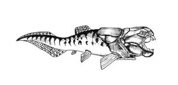 dunkleosteus coloring pages