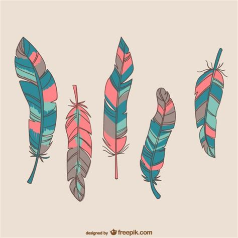 bird with colorful feathers colorful bird feathers vector free