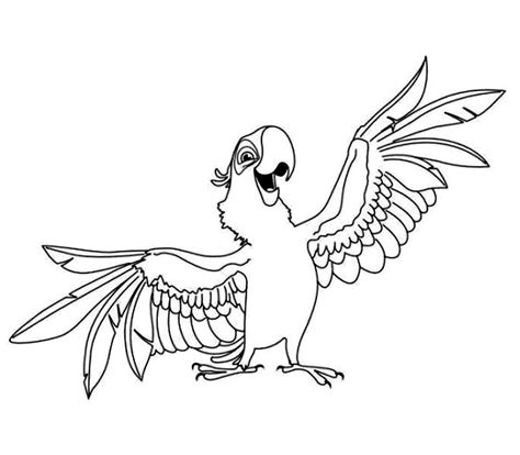 Raincow Macaw Coloring Pages Macaw Coloring Page